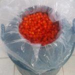 Best Biquinho Peppers - Ship From Brazil