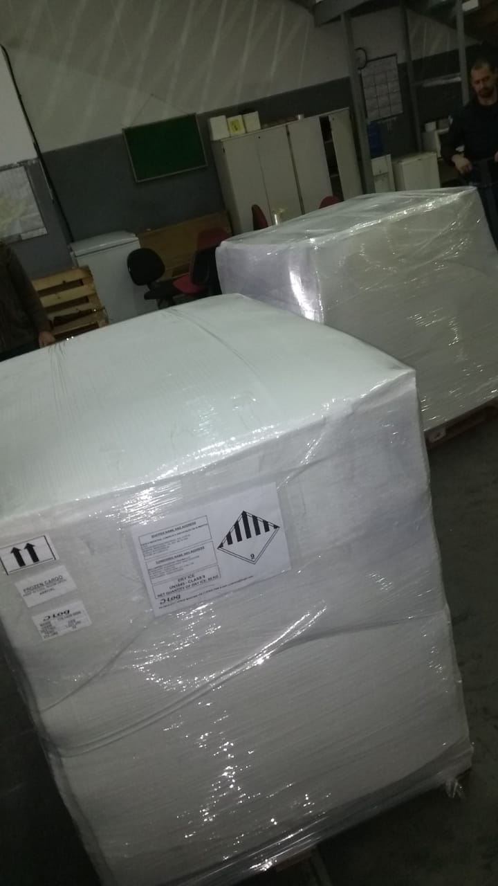 Acai from Brazil ready for shipment