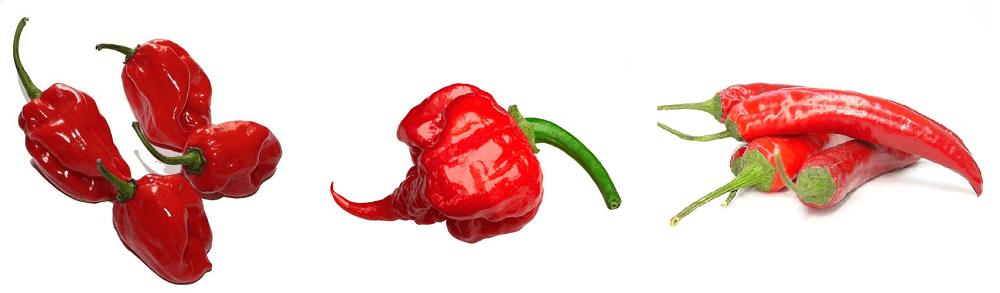 Brazilian Peppers supplier